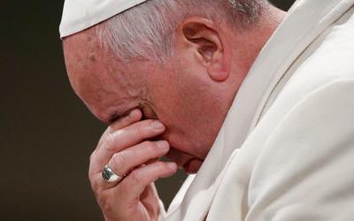 Vatikan, Papa Françesku pranon teorinë e evolucionit
