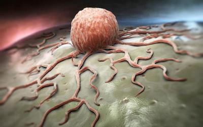Shkencëtarët zbulojnë aksidentalisht një kurë ndaj kancerit